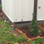 November 3 & 4: Yard work and plumbing