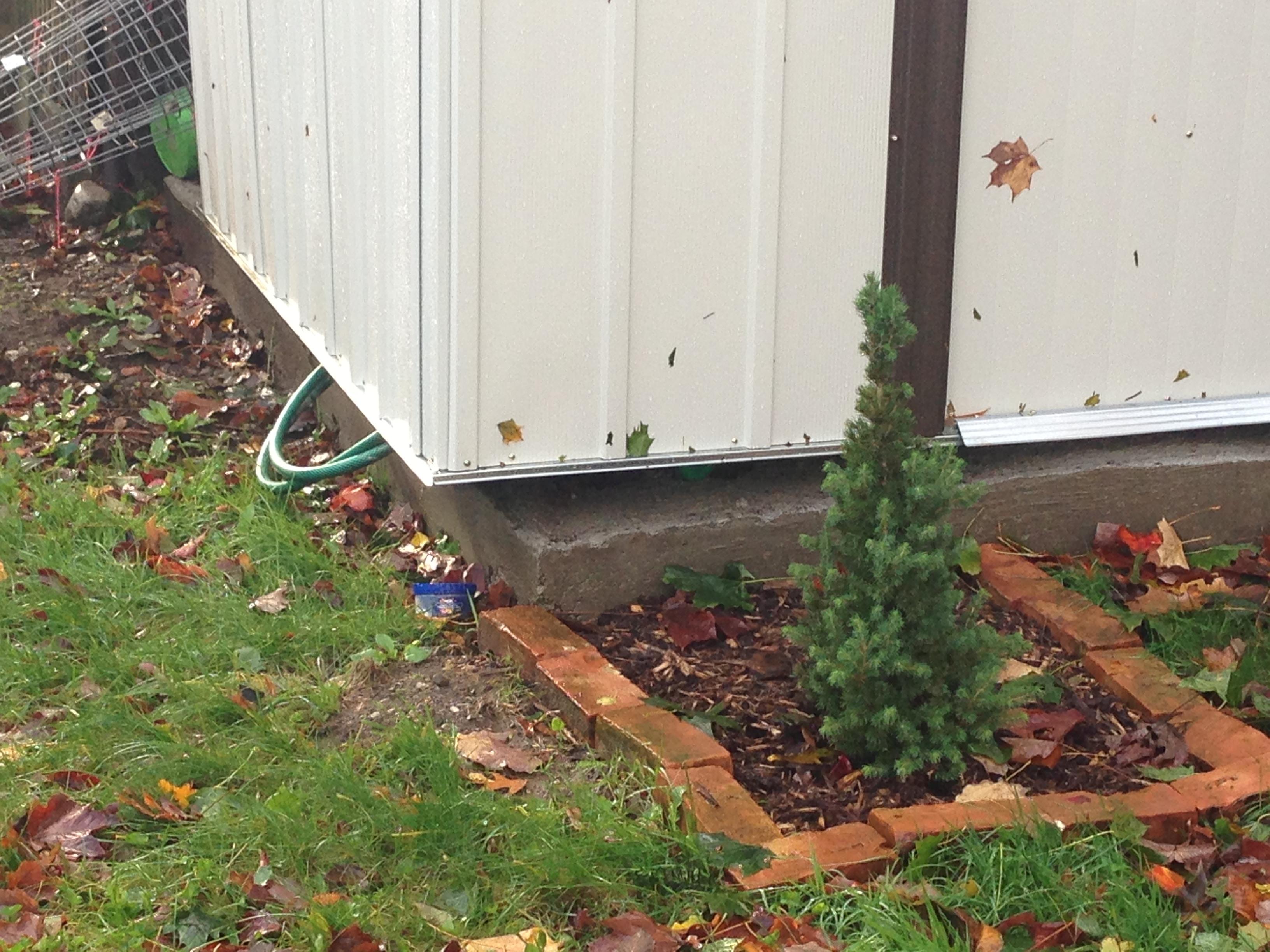 November 3 4 Yard Work And Plumbing Diy Sarah Craft