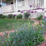Front Yard Flower Update