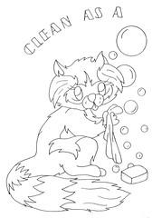 Clean as a raccoon